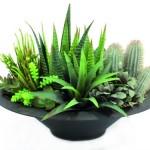 umělé kaktusy